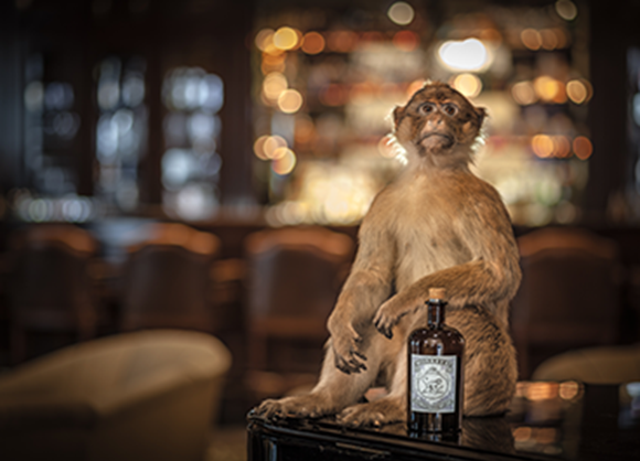 August's Gin of the Month: Monkey 47