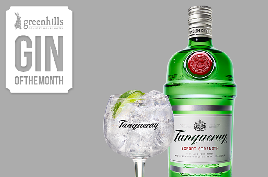 January's Gin of the Month - Tanqueray London Dry Gin